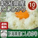 【送料無料】 新潟産コシヒカリ(27年度産)白米10kg(5kg×2袋)※北海道、沖縄及び離島は別途発送金が発生します