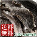 【】三陸産カット出し昆布100g(50g2袋)【2個お買い上げで特典付】【三陸の海藻牧場】【RCP】