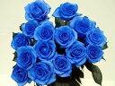 【本数指定で青いバラの花束】ベンデラブルー1本