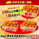熊本産 夢未来みかん 品種:青島みかん3キロ (2Lまたは3Lサイズ ) 送料無料!2箱