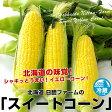 【送料無料】北海道日胆ファームのスイートコーン(めぐみまたは、キャンベラ350g以上)×10本