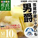 送料無料 北海道より産地直送 JAとうや湖 雪蔵貯蔵じゃがいも (男爵) Mサイズ 10キロ 芋 馬