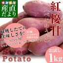 茨城県より産地直送 JAなめがた さつまいも「紅優甘(べにゆうか)」 SからSSサイズ 約1キロ (5から10本) さつま芋 サツマイモ 薩摩芋