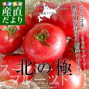 北海道より産地直送 下川町のスーパーフルーツトマト <北の極> 秀品 約800g Sか