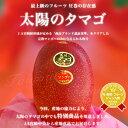 宮崎県 JA宮崎中央 産地直送品!「太陽のタマゴ」2Lサイズ (350g〜459g)×2玉