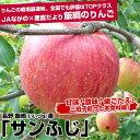 送料無料 長野県より産地直送 JAながの 飯綱地区 サンふじりんご 赤秀以上 5キロ(16玉から20玉) 林檎 りんご リンゴ