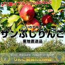 【送料無料】JAいわて中央「葉ップル」サンふじりんご 5キロ(16玉から23玉)3,580円・送料無料!