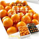 宮崎県から産地直送 JA宮崎中央 たまたまエクセレント 2Lサイズ 1キロ(約40粒)きんかん 金柑