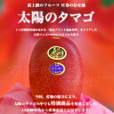宮崎県より産地直送 JA宮崎中央 宮崎完熟マンゴー 太陽のタマゴ 2L×2玉  (350から459g