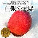 送料無料 北海道から産地直送 十勝音更町産 白銀の太陽 ゴールド(糖度15度以上) 3L以上(450g以上)マンゴー