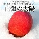 送料無料 北海道から産地直送 十勝音更町産 白銀の太陽 白銀(糖度15度以上) 3L以上(450g以上)マンゴー