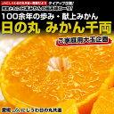 送料無料 愛媛県より産地直送 JAにしうわ 日の丸みかん 千両(ご家庭用2Lサイズ) 約5キロ(約35玉) 蜜柑 みかん ミカン