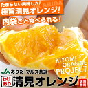送料無料 和歌山県より産地直送 JAありだマルス共選 清見オレンジ 訳あり 5キロ Mから3L(バラ詰 16玉から30玉) オレンジ おれんじ