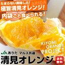 送料無料 和歌山県より産地直送 JAありだマルス共選 清見オレンジ 5キロ Lから3L(優品 16玉から25玉) オレンジ おれんじ