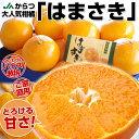 【超目玉価格!新時代の極上柑橘 】JAからつ 「はまさき」(こだわりのハウス栽培)L?Mサイズ 2キ