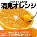 送料無料 愛媛県より産地直送 JAにしうわ三崎共選 清見オレンジ 小玉 MからSサイズ 5キロ