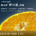 【送料無料】熊本産 夢未来最上級みかん 「夢の恵」5キロ(SからMサイズ)