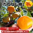 和歌山産 JA紀の里 たねなし柿 大玉3Lサイズ(14玉)