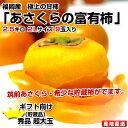 福岡県から産地直送 JA筑前あさくら あさくらの富有柿 <貯蔵品> 秀品 2Lサイズ 2.5キロ(9玉)