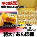 和歌山県から産地直送 JA紀北かわかみ あんぽ柿 70g×12袋