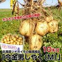 送料無料 北海道より産地直送 JA今金町 北海道じゃがいも 今金男爵 Mサイズ 約10キロ だんしゃく ダンシャク