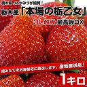 栃木県より産地直送 JAかみつが 栃乙女 DX 1キロ(約500g 12から15粒×2P) いちご イチゴ 苺