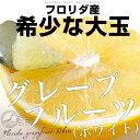 フロリダ産 グレープフルーツ (ホワイト) 約4キロ 大玉サイズ 9玉