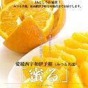 送料無料 愛媛県より産地直送 JAにしうわ・みつる共選 いよかん「蜜る」 2Lから3Lサイズ 10キロ(30から40玉) 伊予柑 イヨカン