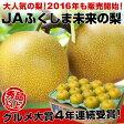 【敬老の日に最適】福島県JAふくしま未来 豊水梨 5キロ(10玉から16玉)