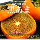 【送料無料】和歌山産 JA紀の里「黒あま」2キロ(8玉から9玉)
