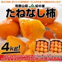【送料無料】和歌山産 JA紀の里 たねなし柿 2箱で2,780円・送料無料! ※1箱2kg(10玉から12玉入り)×2箱
