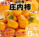 【送料無料】山形産 訳あり庄内柿5キロL〜3L(33玉〜20玉)2,980円・送料無料!