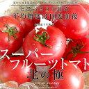 北海道より産地直送 下川町のスーパーフルーツトマト <北の極み> 秀 約800g Sか