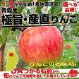 【送料無料】青森JAつがる弘前 選べる品種 青森産「極旨・産直りんご」3キロ(9玉から13玉)