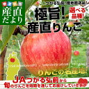 送料無料 青森県より産地直送 JAつがる弘前 極旨・産直りんご 選べる品種 約3キ