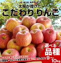 【送料無料!】太陽が授けた林檎!ご家庭用!山形朝日町 APPLE'Sの 極旨りんご!9から10キロ バラ(24玉から46玉)3,880円 サンふじ