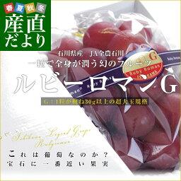 石川県産 JA全農いしかわ ルビーロマン 秀品G (1粒:30gの超大玉) 500g以上×1房化粧箱 市場発送