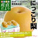 送料無料 栃木県より産地直送 JAうつのみや 栃木県オリジナル品種 にっこり梨 5