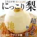 【送料無料】栃木県産 JAはが野 栃木県オリジナル品種 にっこり梨 大玉(4から5玉)優品以上 約5キロ【02P28Oct16】