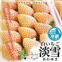 熊本県産 白いちご 淡雪(あわゆき) Lサイズ以上 約270g×2P(11から15粒×2パック入り)