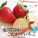 送料無料 茨城産 鬼澤農園のこだわりいちご(ステビア栽培 栃乙女) A品から3L  1パック300g以上×4パック入り合計1.2キロ以上 市場発送 苺 イチゴ