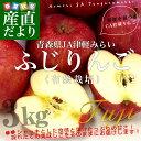 青森県より産地直送 JA津軽みらい ふじりんご CA貯蔵品 3キロ(10玉)林檎 リン