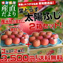 送料無料 青森県より産地直送 JAつがる弘前 葉とらず太陽ふじりんご 糖度13度以上 約3キロ×2箱(9から13玉×2箱) 林檎 りんご リンゴ