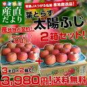 送料無料 青森県より産地直送 JAつがる弘前 葉とらず太陽ふじりんご 糖度13度以上