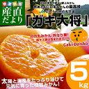送料無料 愛媛県より産地直送 JAにしうわ 日の丸みかん ガキ大将 Sサイズ 約5キロ(約60玉)