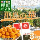 長崎県より産地直送 JAながさき西海 西海みかん 出島の華 SSサイズ 3キロ 品種:させぼ温州 蜜