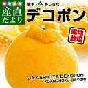 送料無料 熊本県から産地直送 JAあしきた 露地栽培デコポン 2L 5キロ(20玉) 産直だより