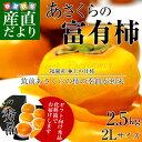 送料無料 福岡県より産地直送 JA筑前あさくら あさくらの富有柿(甘柿) ギフト向