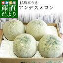 送料無料 熊本県産 JA熊本うき アンデスメロン 4Lから3L 5キロ箱(3から4玉)