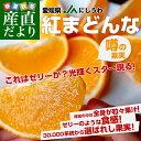送料無料 愛媛県より産地直送 JAにしうわ 紅まどんな 2LからLサイズ 約3キロ(12玉から15玉)オレンジ おれんじ